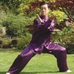Grandmaster Chen Zhenglei
